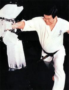 karate_kyokushin01
